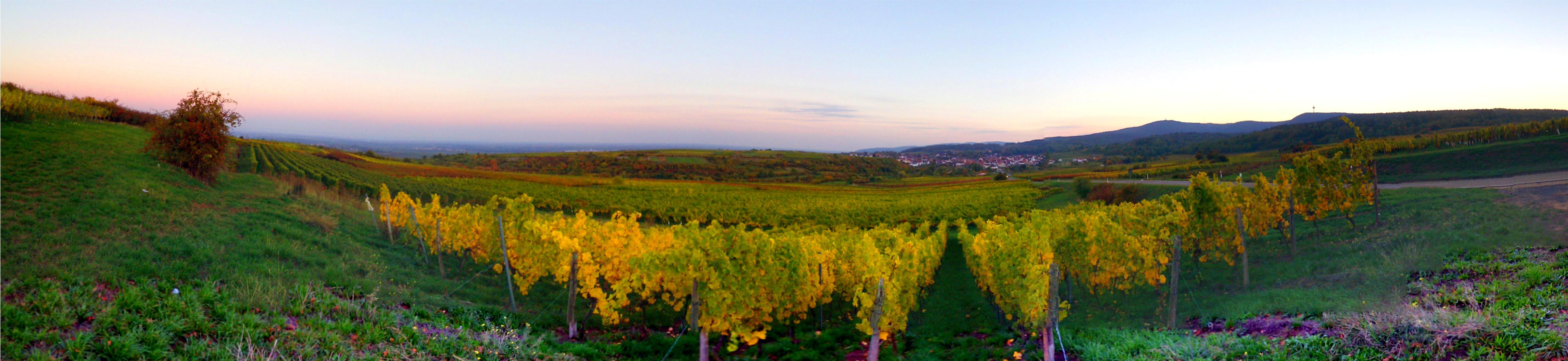 DB0NIX Leistadt panorama